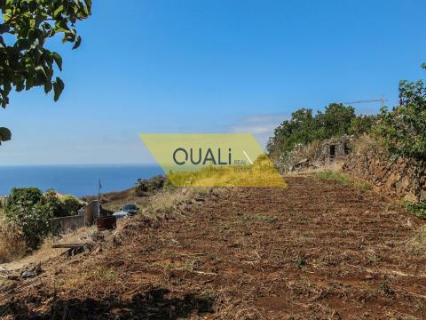 LAND WITH PROJECT APPROVED - REED - € 159.000,00 ISLAND OF MADEIRA