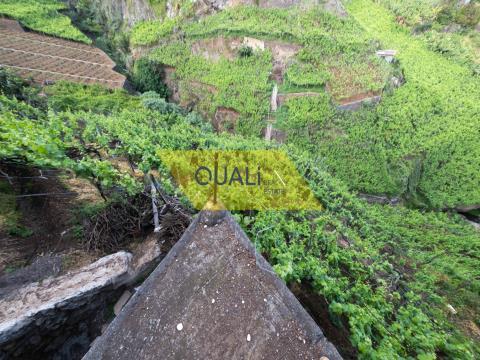 Terreno -  1620m2 de vinha, no Estreito.C.Lobos - Ilha da Madeira - €28.000,00
