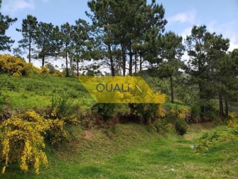 Terreno com 907m2, viabilidade de Construção na Fajã da Ovelha - € 31.500,00