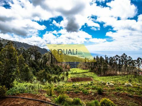 Tierra agrícola en Ponta do Sol con 14.350 m2 en la isla de Madeira. €110.000,00