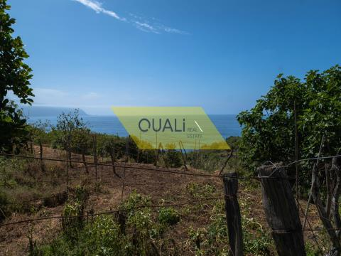 Excellent land with 1354m2 in Ponta Delgada - Madeira Island € 90.000,00