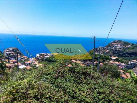 Excellent land with 532m2-Ribeira Brava-Madeira Island - € 87.500,00