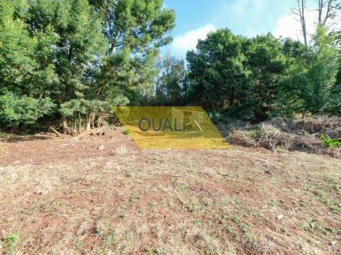 Land for real estate investment with an area of 841m2, Camacha - Madeira Island - € 58.870,00