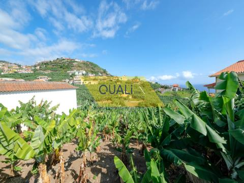390 m2 land for sale in Ponta Do Sol, Madeira Island, € 55,000.00