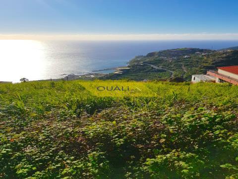 Terreno com 465 m2 na Ribeira Brava - Ilha da Madeira € 30.000,00