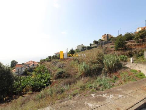 Real estate land Studio