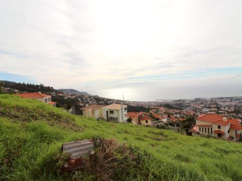 Terreno em Funchal, São Roque;
