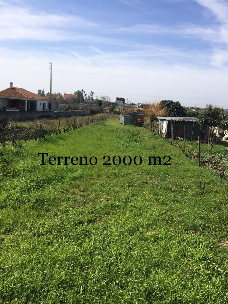 Lotto di Terreno