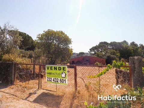 Real estate land