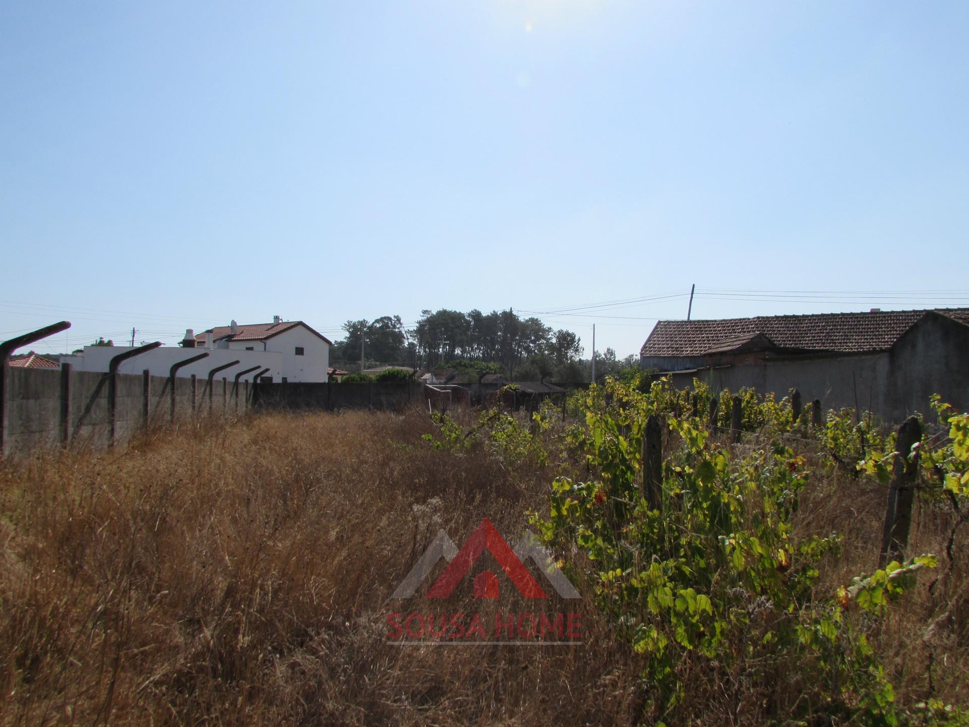 Small Farm T3+1