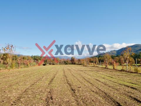 Terreno Agrícola 3830m2