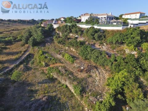 Terreno rústico localizado em Leceia/Barcarena com área de 0,26ha, equivalente a 1.360m².