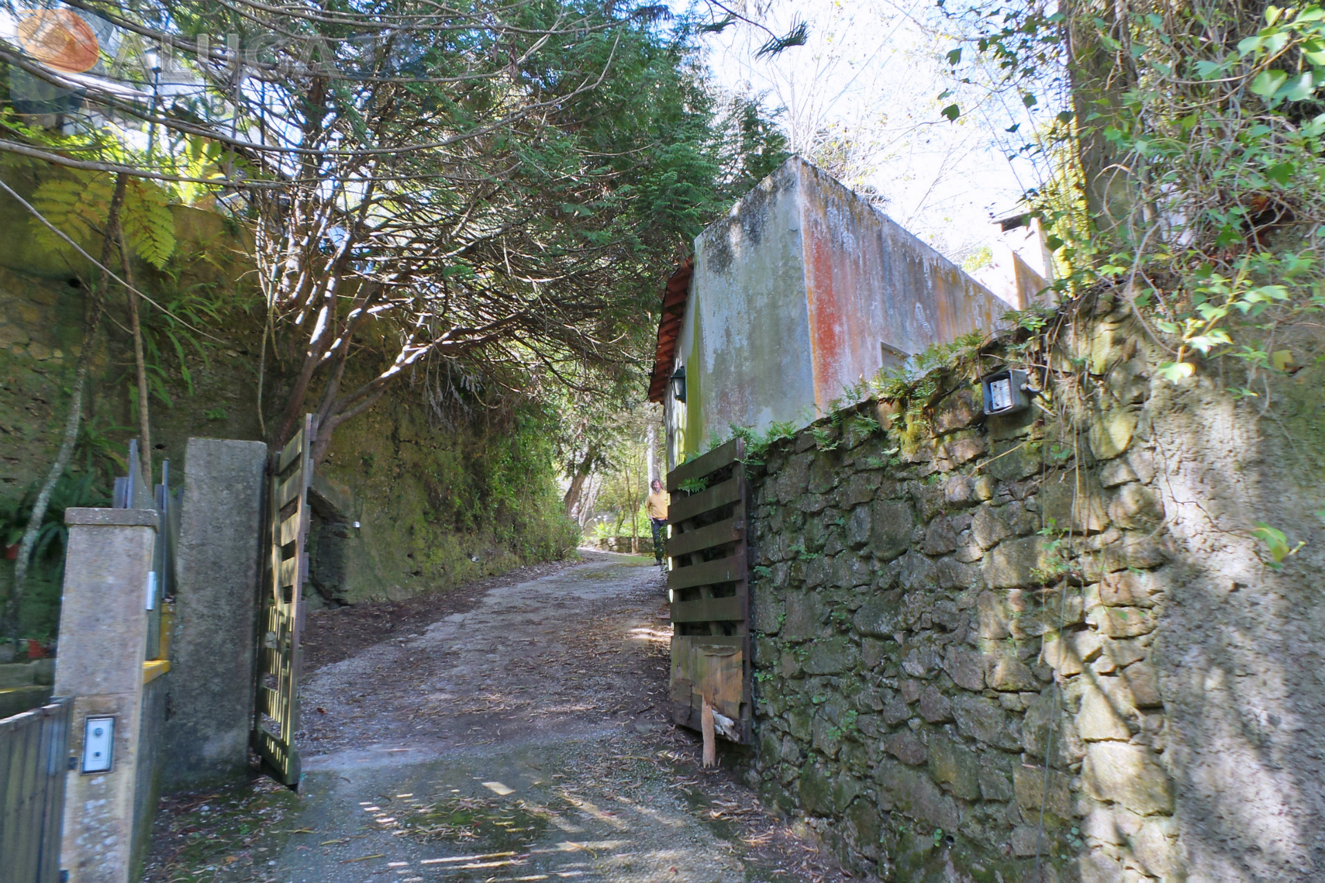 Quinta inserida em pleno Parque Natural de Sintra, composta por 2 moradias e 2.400m² de terreno
