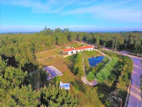 Magnificent Estate with 4 bedrooms, 70km from Lisbon.