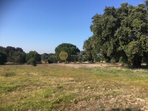 Kleiner Bauernhof (Grundstück mit ca. zwei Hektar und Baugenehmigung)