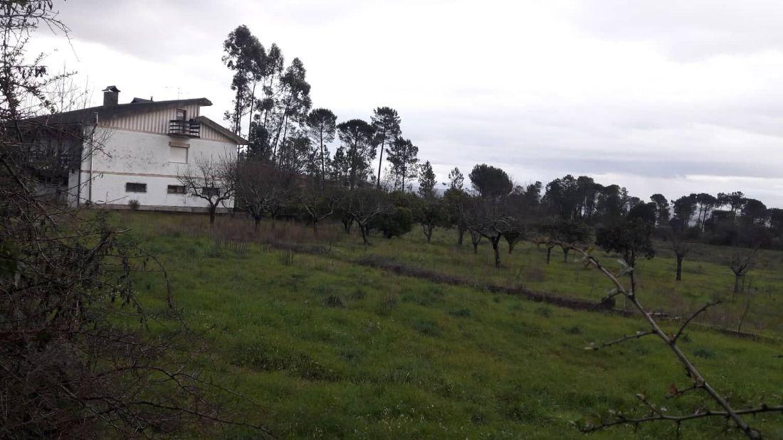 Farm T5