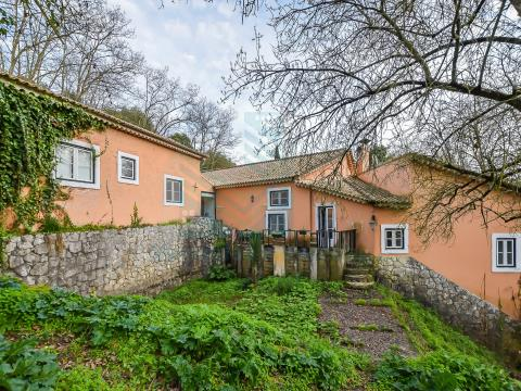 Farm with Olympic Arena and Country House with 10 rooms in Torres Novas