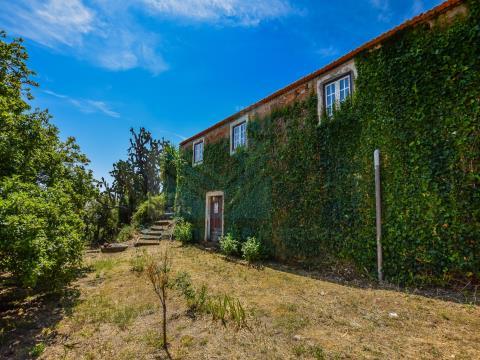 Quinta de São Vicente  em Constância
