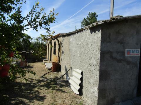 Quinta - Maxiais - 10.000 m2 de Terreno - 10 min de Castelo Branco