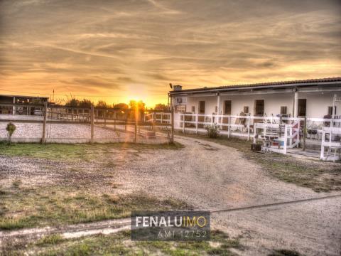 Quinta equestre, moradia, piscina, casa de hóspedes, perto do golfe, Portugal