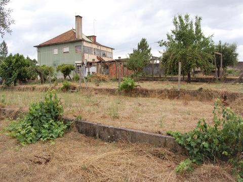 Small farmhouse near Tomar