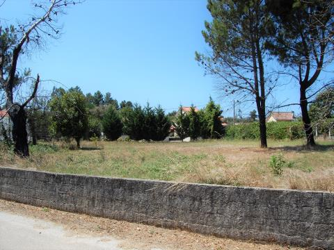 Land with viability of construction